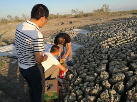 环保督察组点名新疆治污不力单位 25人被拘留