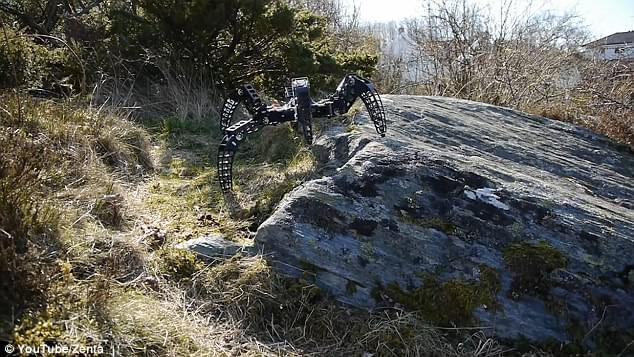 体型轻盈走位灵活 工程师制作狼蛛全地形机器人的照片 - 4