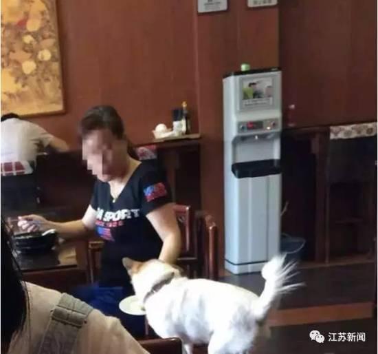 大妈用餐厅盘子喂狗服务员看到未制止 邻桌炸锅