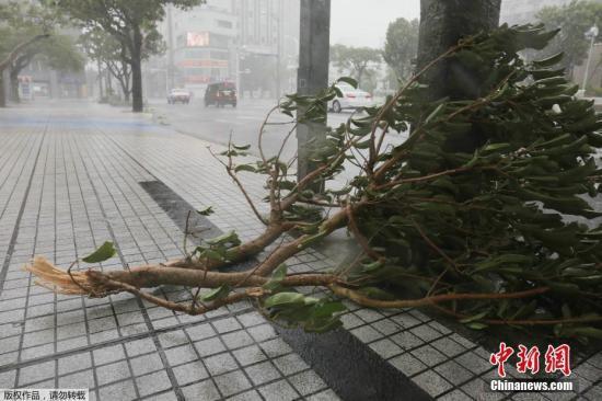 """台风""""潭美""""强势登陆日本致22人伤 关西机场今关闭"""