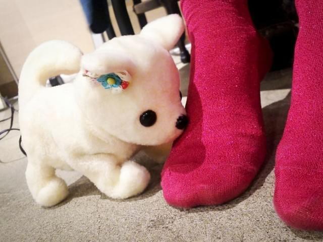日本机器狗的特殊癖好:爱闻臭脚还会装死