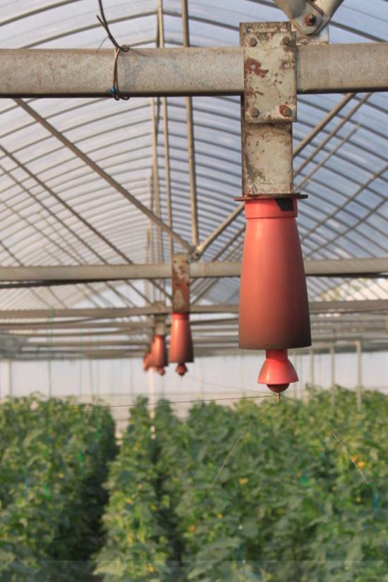电气栽培为中国农业种植提供新动力