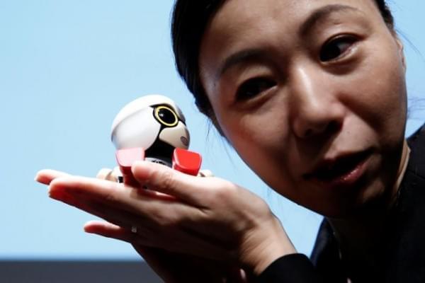 丰田Kirobo Mini机器人伴侣将于明年开始销售的照片 - 3