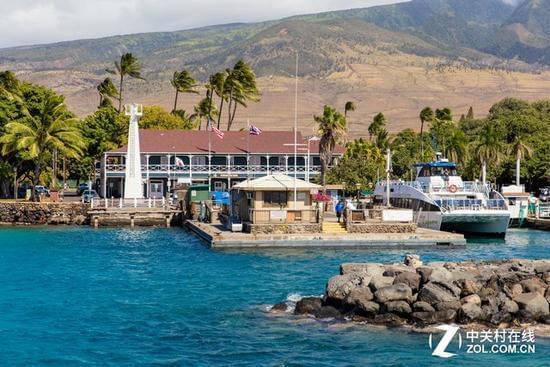 大C游世界 夏威夷拉海纳出海观鲸之旅