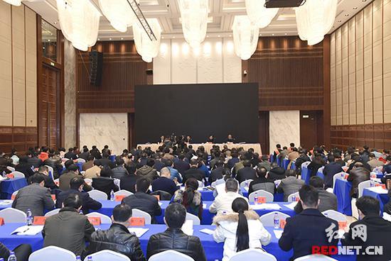 陈飞:扎实推进就业创业 构建多层次社保体系