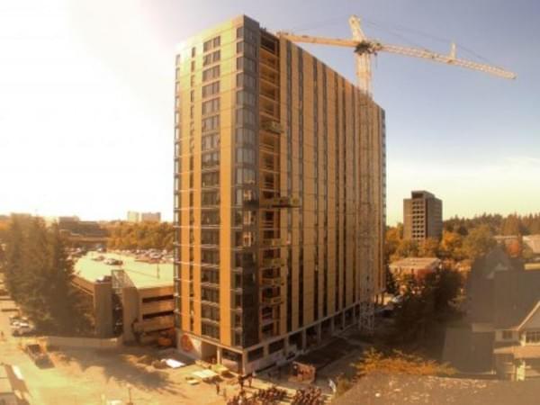 """""""树屋""""设计到80层了 木材也能建摩天楼?的照片 - 4"""
