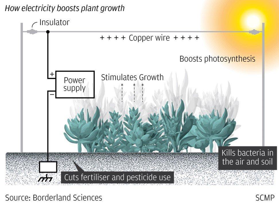 电气为中国农业种植提供新动力