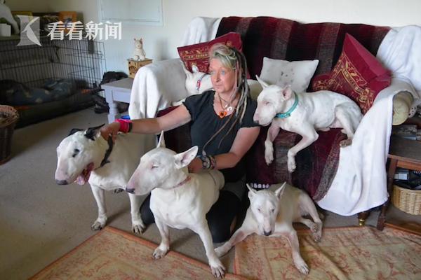 女子养30条狗丈夫忍不了:选我还是选狗?女子:选狗
