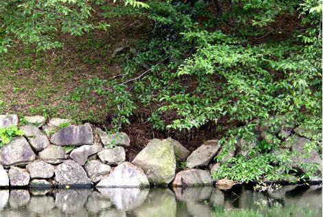 暴雨灾害致日本国宝彦根城内部分石墙崩落垮塌