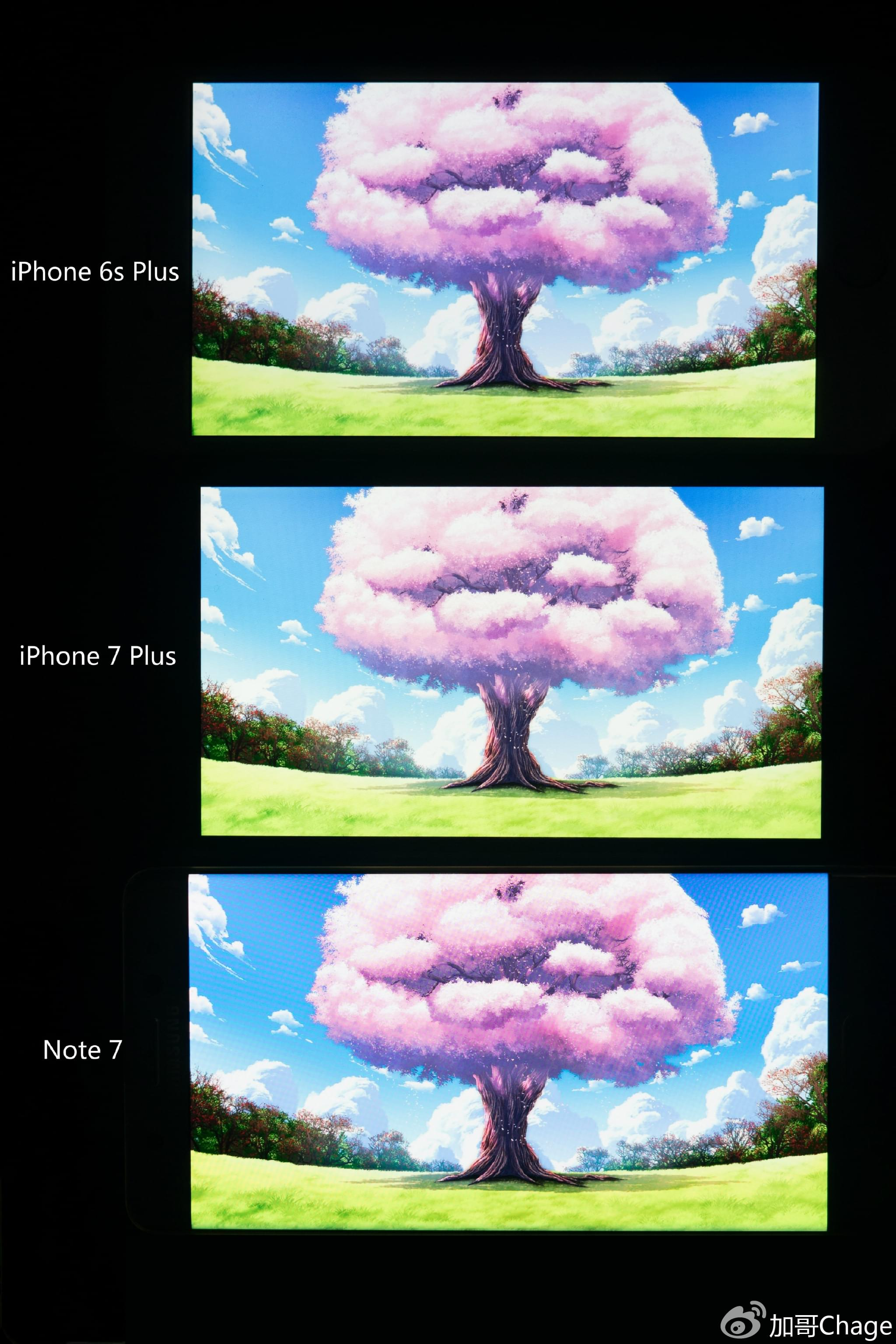 苹果的大败局?最详细的iPhone 7万字评测的照片 - 15