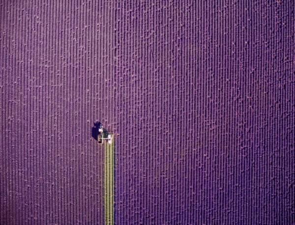 2016年最惊艳的20张无人机航拍摄影作品出炉的照片 - 3