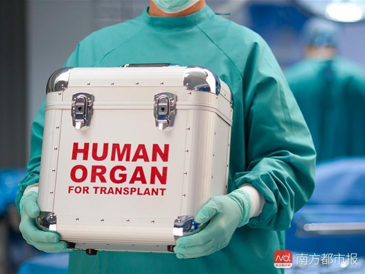 移植了同一人的器官后4人患乳腺癌 专家:非常少见