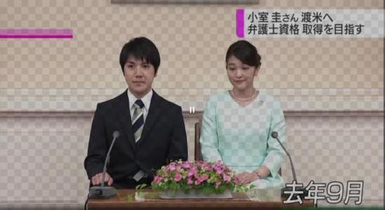 真子公主婚约现变数?日本宫内厅:小室圭不是未婚夫