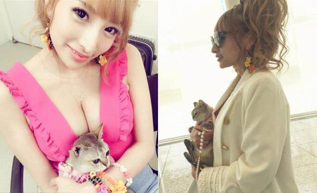 把猫塞名牌包拎着走 26岁性感女星被批虐待动物