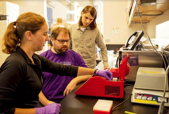 新研究表明DNA可以攻击计算 但影响有限