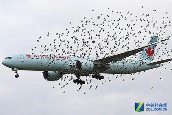 天使与魔鬼16:飞机遇险自救保命手册