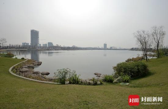 """""""鱼鸟乐园""""兴隆湖吸引近百种候鸟 已然成为""""天府绿肺"""""""