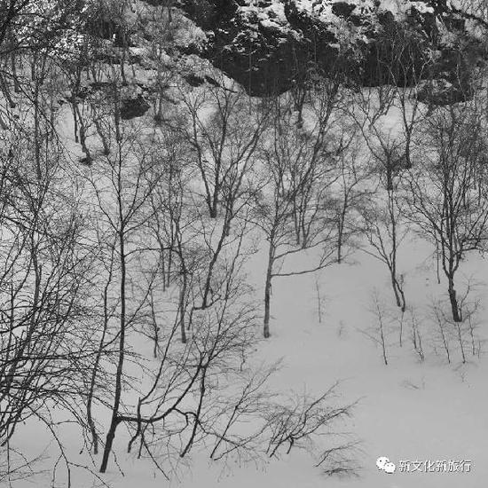 全国十亿人次见证吉林雪韵