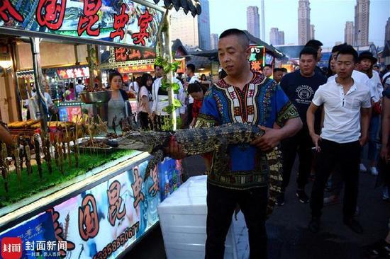 沈阳街头现鳄鱼肉炸串 摊主街头霸气遛鳄鱼 网络热点 第3张
