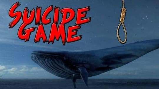 新蓝鲸死亡游戏Momo全球扩散 有12岁女孩自杀