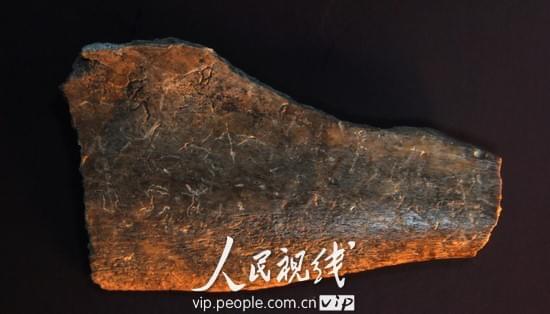 校区美食:刘凤君教授与远古骨刻文v校区-网易故事人物南师大随园图片