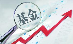 """新经济掀起港股""""打新""""潮 公募静候最佳狩猎时机"""
