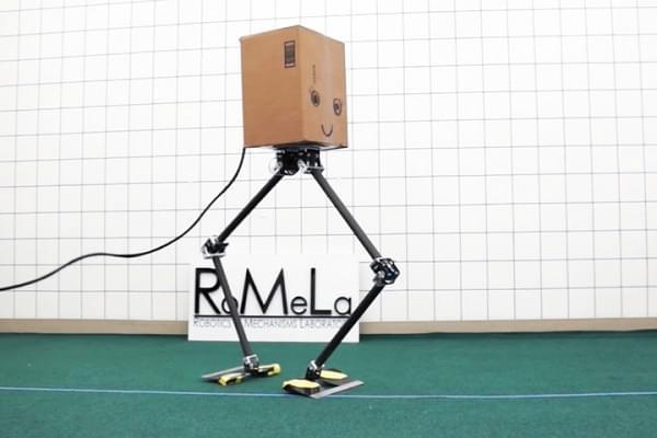 忍俊不禁:研究人员开发出两款步态奇特的行走机器人的照片 - 1