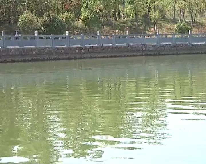 女幼师凌晨遭多人纠缠后离奇命丧湖中 身上有伤痕