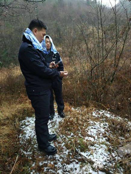 雨雪交加 民警山中徒步5小时找回走失羊群和老人