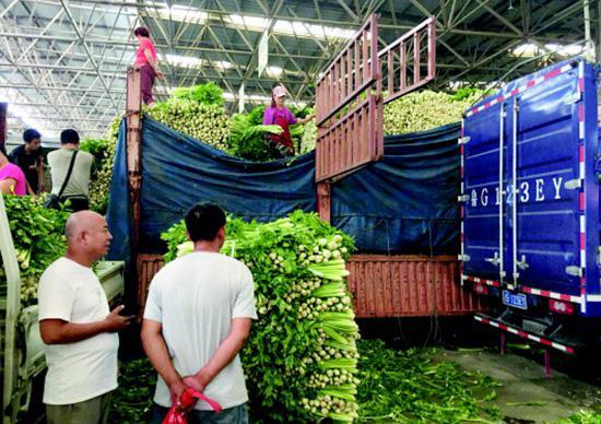 寿光村民:蔬菜大棚里的水用4个水泵抽1天1夜还没完