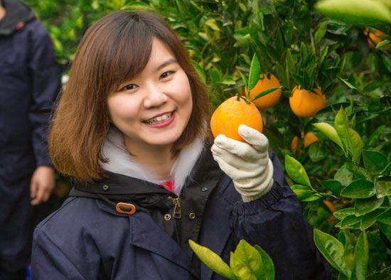 26岁剑桥女博士返乡种脐橙 年收入近4000万
