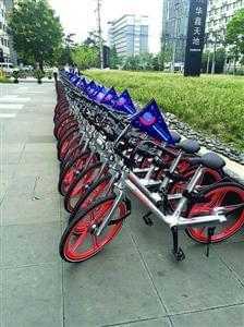 上海今年将投放10万辆摩拜单车的照片 - 2