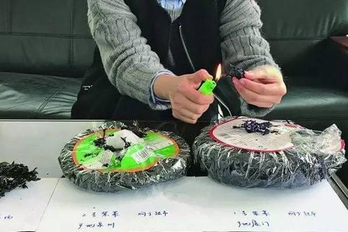 紫菜业遭塑料谣言重创 从业者称事发前曾遭敲诈的照片 - 3
