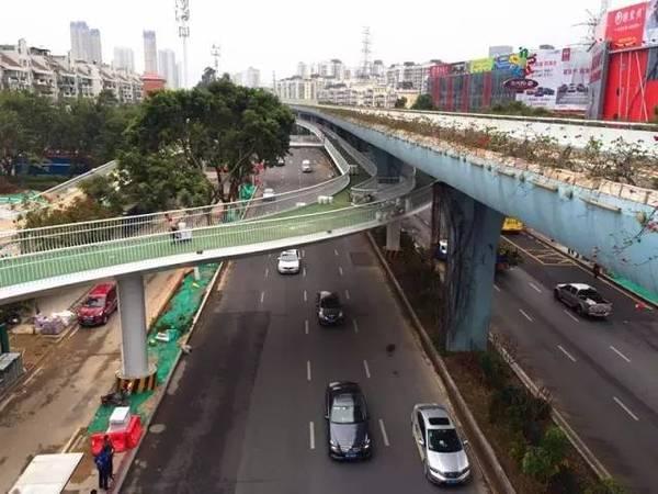 全国首条空中自行车道建成 全长7.6公里的照片 - 20