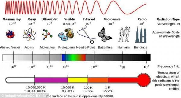 手机辐射不会导致不育:能量太低不能杀死精子的照片 - 2