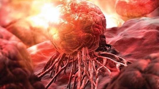 将药送入肿瘤内部!新研究将大幅减少化疗药物用量
