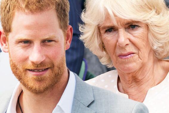 哈里王子谈卡米拉:她非邪恶继母 我们全身心爱她