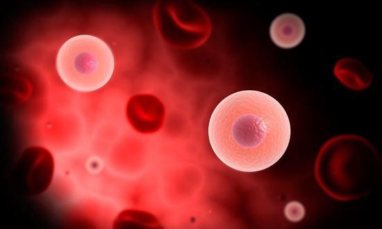 年轻男性的精子和血液 真的能帮助女性保持年轻吗