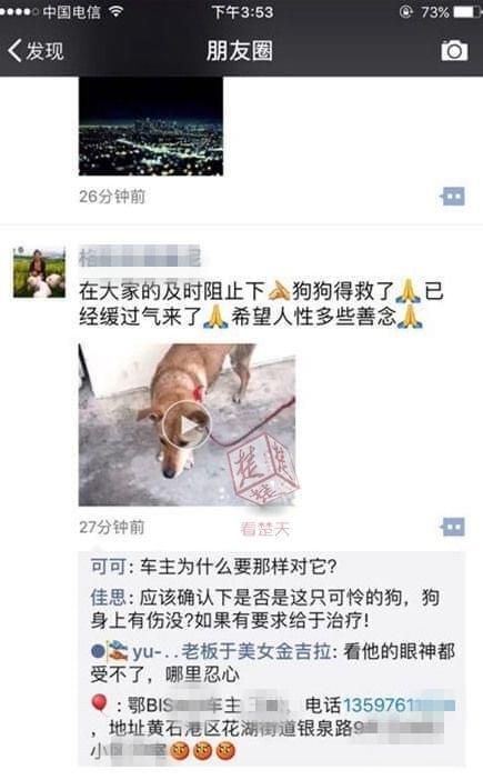"""黄狗被绑车后拖行 黄石男子虐狗遭网友""""通缉""""求原谅的照片 - 2"""