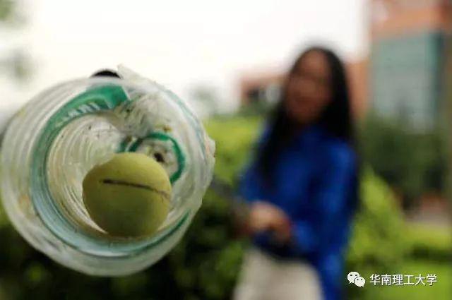 这所鲤工大学请师生吃芒果莲雾 变大型采摘现场