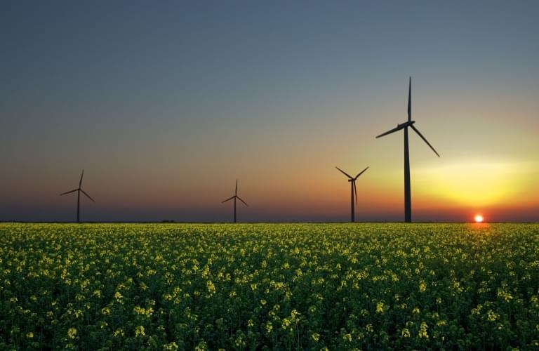 2050年可再生能源能满足全球用电,太阳能占70%