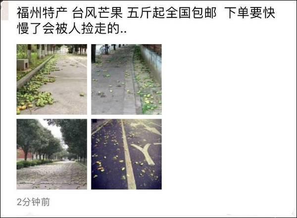 台风玛莉亚登陆福建 市民拿麻袋上街捡吹落芒果