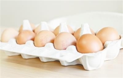 """比利时检测出氟虫腈 超欧盟标准""""毒鸡蛋"""""""