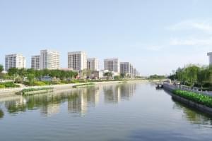 治理河道绿化造林 武清推进大运河提升改造