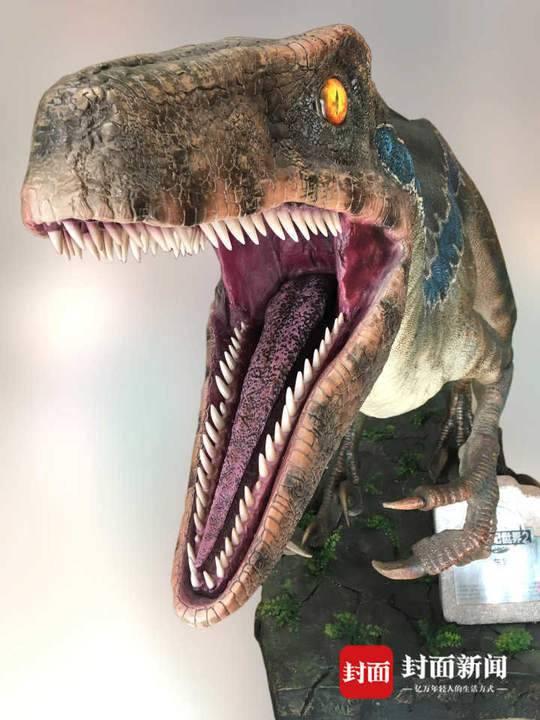 侏罗纪猜想证实!首例群体驰龙类恐龙足迹被发现