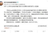 四川小学生被老师虐打致伤 涉事教师已调离岗位