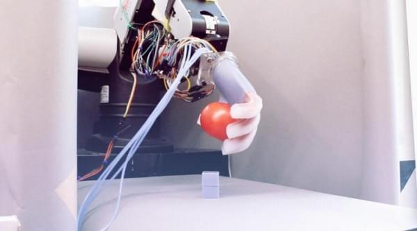 为什么让机器人抓取个物品那么难?的照片 - 1