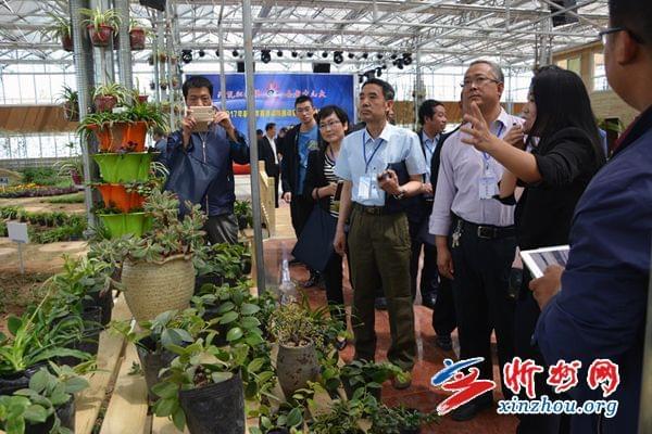 原平农校召开2017年职教活动周推动暨农业科技博览园开园大会