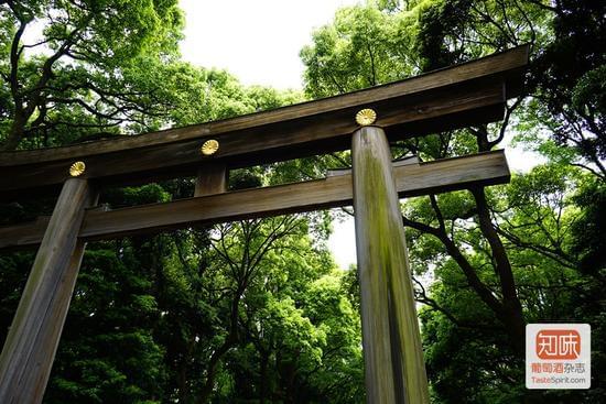 明治神宫的大鸟居是日本最大的木制鸟居