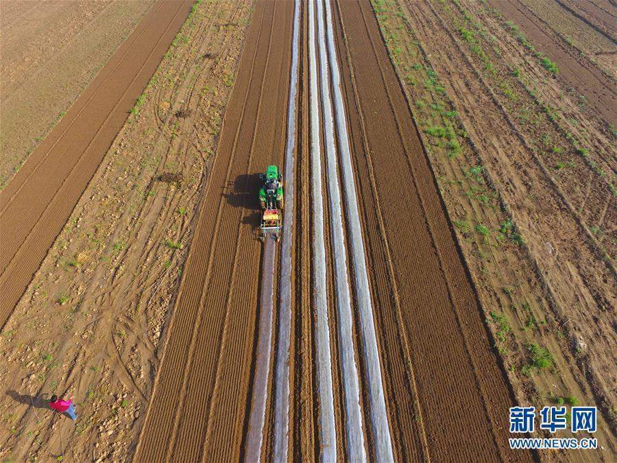 #(农业)(5)谷雨时节农事忙